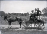 Horse and buggy with Pomona College students