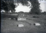 Grave of Norton family