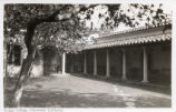 Loggia in Sycamore Court, Scripps College