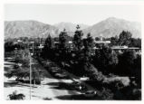 Pitzer College campus
