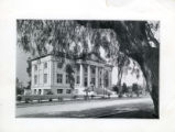 Carnegie Hall Library and tree, Pomona College