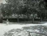 Elm Tree Lawn at Scripps College