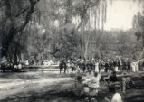 Pomona College students picnicking