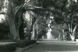 College Avenue, Fourth Street, Pomona College