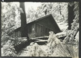 Sigma Phi Alpha fraternity cabin in winter, Pomona COllege
