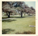Badgley Garden, Claremont McKenna College