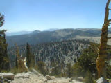 View from the Pacific Crest Trail north to Rock Creek