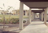 Covered walk at Pitzer College