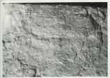 Wall inscriptions from Egypt's Sixth Dynasty