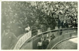 Photograph, Crowd in horse arena